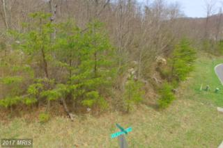 10500 Shortest Day Road, Lavale, MD 21502 (#AL9904462) :: Pearson Smith Realty