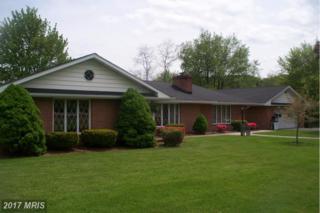 11708 Old Legislative Road, Frostburg, MD 21532 (#AL9932184) :: Pearson Smith Realty
