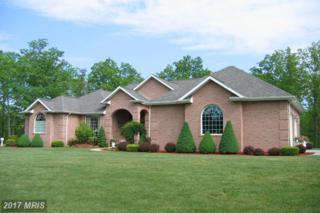 17501 Bel Vista Drive, Oldtown, MD 21555 (#AL9933922) :: Pearson Smith Realty