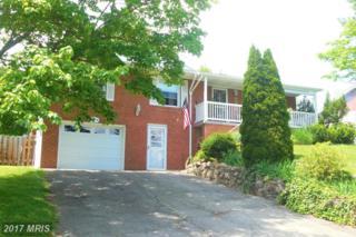 15413 Shamrock Road SW, Cumberland, MD 21502 (#AL9946591) :: Pearson Smith Realty