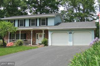 11007 Ramblewood Drive NW, Lavale, MD 21502 (#AL9952306) :: Pearson Smith Realty