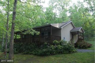 26015 Gorman Road SE, Oldtown, MD 21555 (#AL9954466) :: Pearson Smith Realty