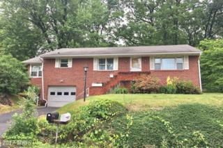 11806 Crocus Avenue, Cumberland, MD 21502 (#AL9959679) :: Pearson Smith Realty