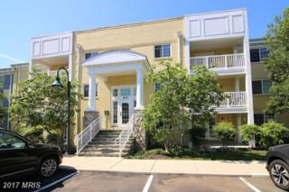 4079 Four Mile Run Drive #202, Arlington, VA 22204 (#AR9952187) :: Pearson Smith Realty