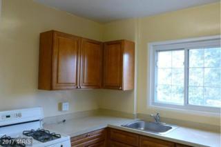 1659 Fitzgerald Lane #913, Alexandria, VA 22302 (#AX9840137) :: Pearson Smith Realty
