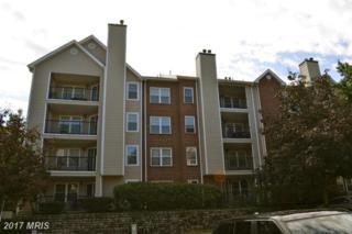 3303 Wyndham Circle #343, Alexandria, VA 22302 (#AX9851388) :: Pearson Smith Realty