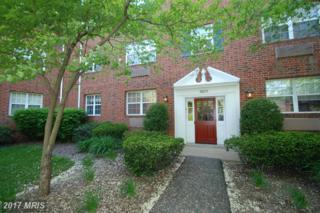 1628 Abingdon Drive #101, Alexandria, VA 22314 (#AX9855816) :: Pearson Smith Realty