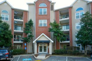 3313 Wyndham Circle #2209, Alexandria, VA 22302 (#AX9868452) :: LoCoMusings