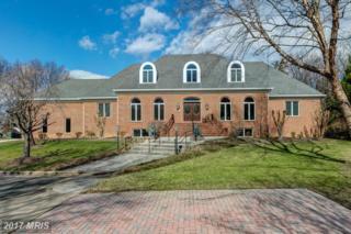 1603 King James Place, Alexandria, VA 22304 (#AX9869465) :: Pearson Smith Realty