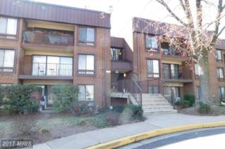 134 Roberts Lane #401, Alexandria, VA 22314 (#AX9875010) :: LoCoMusings