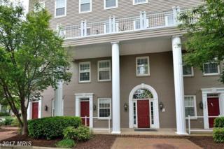 1302 Roundhouse Lane #44, Alexandria, VA 22314 (#AX9928291) :: Pearson Smith Realty