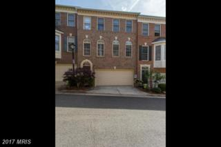 4631 Knight Place, Alexandria, VA 22311 (#AX9949037) :: Pearson Smith Realty