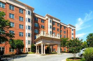 8002 Brynmor Court #302, Pikesville, MD 21208 (#BC9836256) :: Pearson Smith Realty