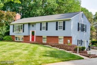 3 Doe Court, Phoenix, MD 21131 (#BC9837459) :: Pearson Smith Realty