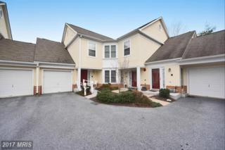 19 Thomas Craddock Court #19, Pikesville, MD 21208 (#BC9838264) :: Pearson Smith Realty