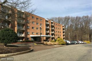 7202 Rockland Hills Drive #110, Baltimore, MD 21209 (#BC9839323) :: Pearson Smith Realty