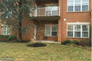 12105 Tullamore Court #101, Lutherville Timonium, MD 21093 (#BC9841006) :: Pearson Smith Realty