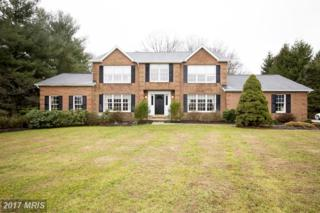 6 Stream Court, Owings Mills, MD 21117 (#BC9846991) :: Pearson Smith Realty