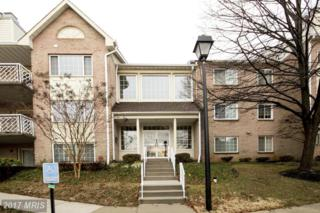 416 Rockfleet Road #301, Lutherville Timonium, MD 21093 (#BC9847358) :: Pearson Smith Realty
