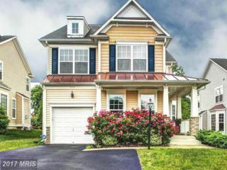 111 New Market Court, Catonsville, MD 21228 (#BC9847759) :: Pearson Smith Realty