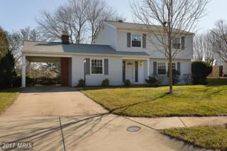 5 Silent Meadow Court, Cockeysville, MD 21030 (#BC9848516) :: Pearson Smith Realty