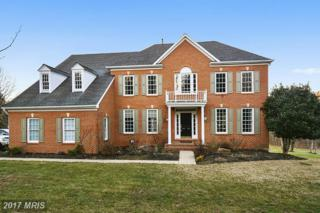 28 Windflower Court, Reisterstown, MD 21136 (#BC9848888) :: Pearson Smith Realty