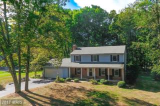 1 Doe Court, Phoenix, MD 21131 (#BC9849427) :: Pearson Smith Realty