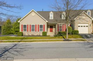 228 Teapot Court #228, Reisterstown, MD 21136 (#BC9849886) :: Pearson Smith Realty