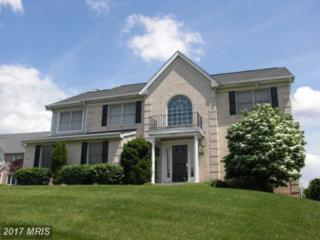 3730 Thoroughbred Lane, Owings Mills, MD 21117 (#BC9852583) :: Pearson Smith Realty