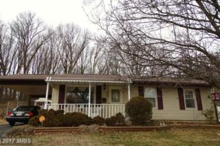 207 Greenview Avenue, Reisterstown, MD 21136 (#BC9857514) :: Pearson Smith Realty