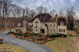 11 Spring Forest Court, Owings Mills, MD 21117 (#BC9857771) :: LoCoMusings
