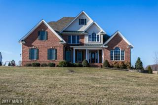 3917 Trails End Circle, Phoenix, MD 21131 (#BC9859579) :: Pearson Smith Realty