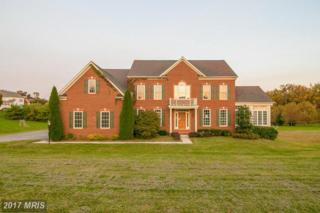 306 Stable View Court, Parkton, MD 21120 (#BC9859860) :: LoCoMusings