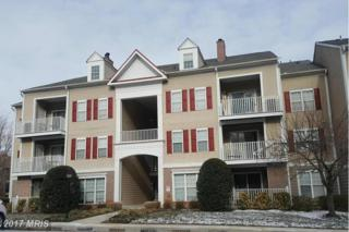 6 Tyler Falls Court N, Baltimore, MD 21209 (#BC9861220) :: Pearson Smith Realty