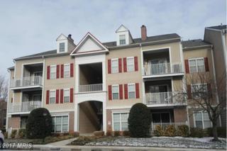 6 Tyler Falls Court N, Baltimore, MD 21209 (#BC9861220) :: LoCoMusings