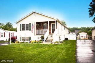 1616 Cape May Road, Essex, MD 21221 (#BC9862143) :: Pearson Smith Realty