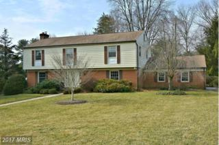 6 New Forest Court, Baltimore, MD 21286 (#BC9862548) :: LoCoMusings