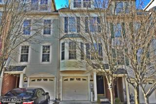 10822 Will Painter Drive, Owings Mills, MD 21117 (#BC9863936) :: Pearson Smith Realty