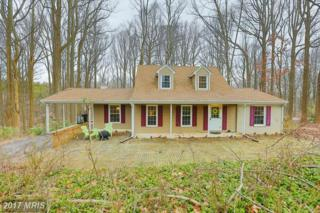 16 Hickory Meadow Road, Cockeysville, MD 21030 (#BC9865106) :: Pearson Smith Realty