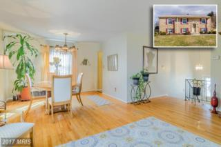 3 Stitchberry Court, Reisterstown, MD 21136 (#BC9865709) :: Pearson Smith Realty