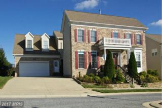 9135 Panorama Drive, Perry Hall, MD 21128 (#BC9867698) :: Pearson Smith Realty