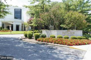 4001 Old Court Road #307, Baltimore, MD 21208 (#BC9869335) :: Pearson Smith Realty