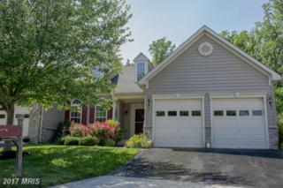201 Teapot Court, Reisterstown, MD 21136 (#BC9876534) :: LoCoMusings