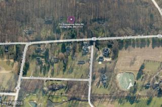 215 Greenspring Valley Road, Owings Mills, MD 21117 (#BC9880388) :: LoCoMusings