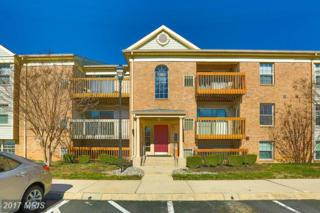 8 Cloverwood Court #101, Baltimore, MD 21221 (#BC9882054) :: Pearson Smith Realty