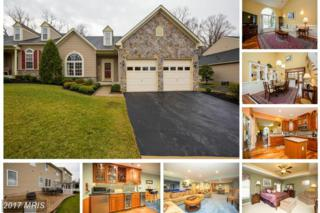 47 Glyndon Trace Drive, Reisterstown, MD 21136 (#BC9882454) :: LoCoMusings