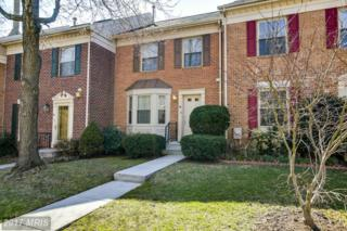 48 Meadow Run Court, Sparks, MD 21152 (#BC9883524) :: LoCoMusings