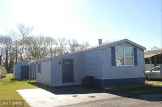 715 Gregwood Court, Dundalk, MD 21222 (#BC9885933) :: LoCoMusings
