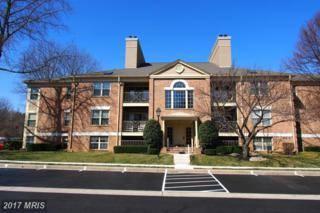 14200 Dove Creek Way #108, Sparks, MD 21152 (#BC9889634) :: LoCoMusings