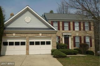 234 Ritterslea Court, Owings Mills, MD 21117 (#BC9893808) :: Pearson Smith Realty
